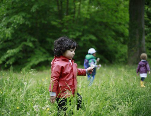 Action 2018 – Grandir en Humanité – 17 juin – toute la journée – Parc d'Ehpad Emmaüs Diaconesses – Strasbourg